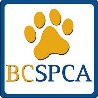Community Support - BC SPCA