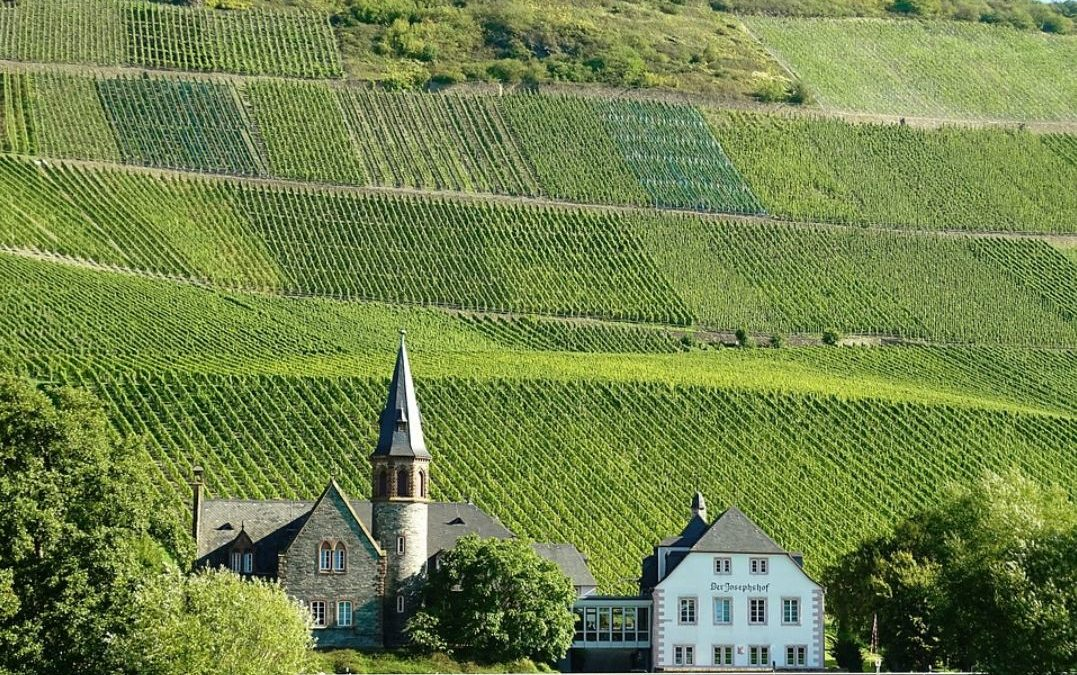 Wine Regions of the World – Germany