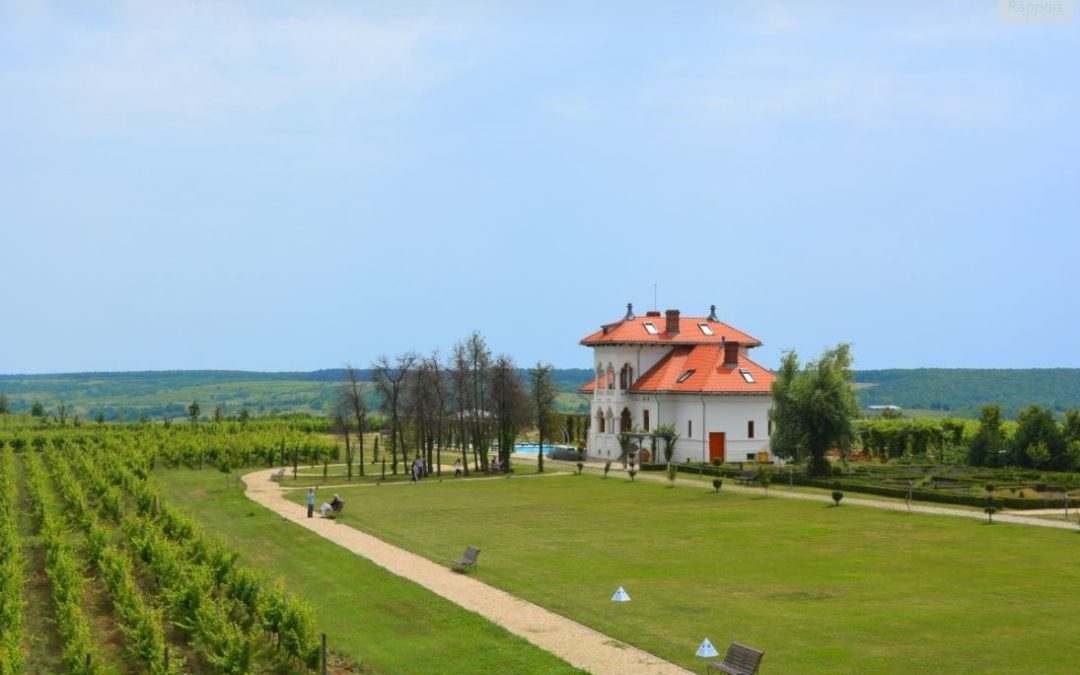 Wine Regions of the World – Romania