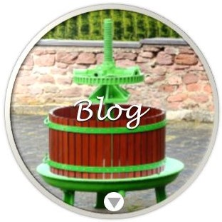 Newsletter - Blog