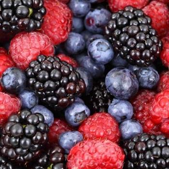 Fruit-Wines-Berries