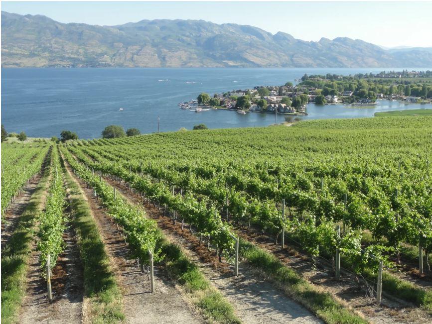Wine Regions of the World – Canada